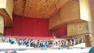 Grant Park Symphony pic